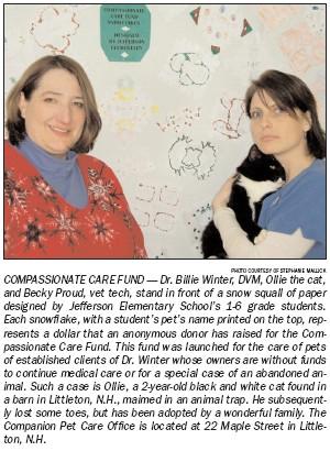 snowflake-story-1.jpg